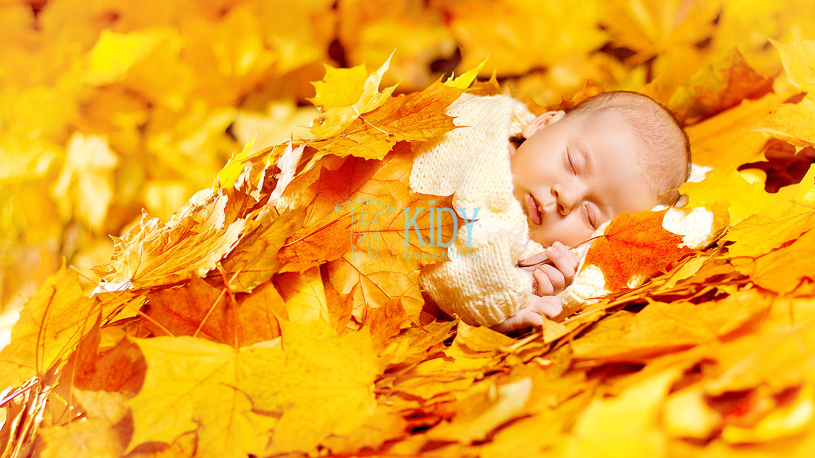 7 questions about clothing for autumn newborns
