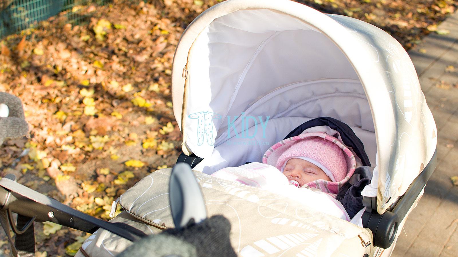 Прогулка с ребенком в коляске фото