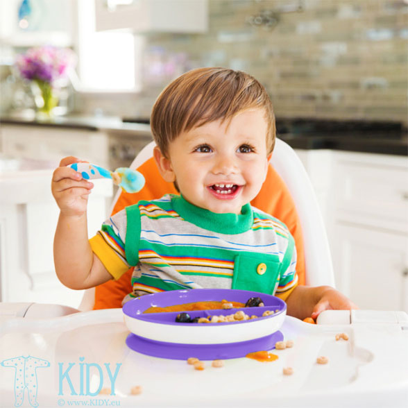 Purple Stay Put Suction Plate