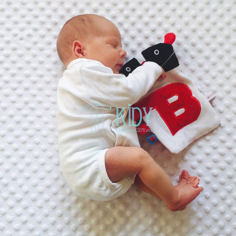 Sensorinis žaislas MR B