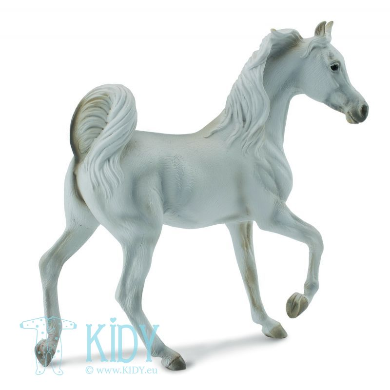Arabian Mare Grey