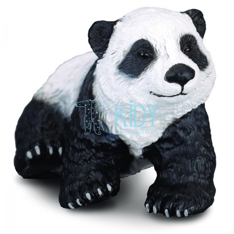 Didžiosios pandos jauniklis sėdintis