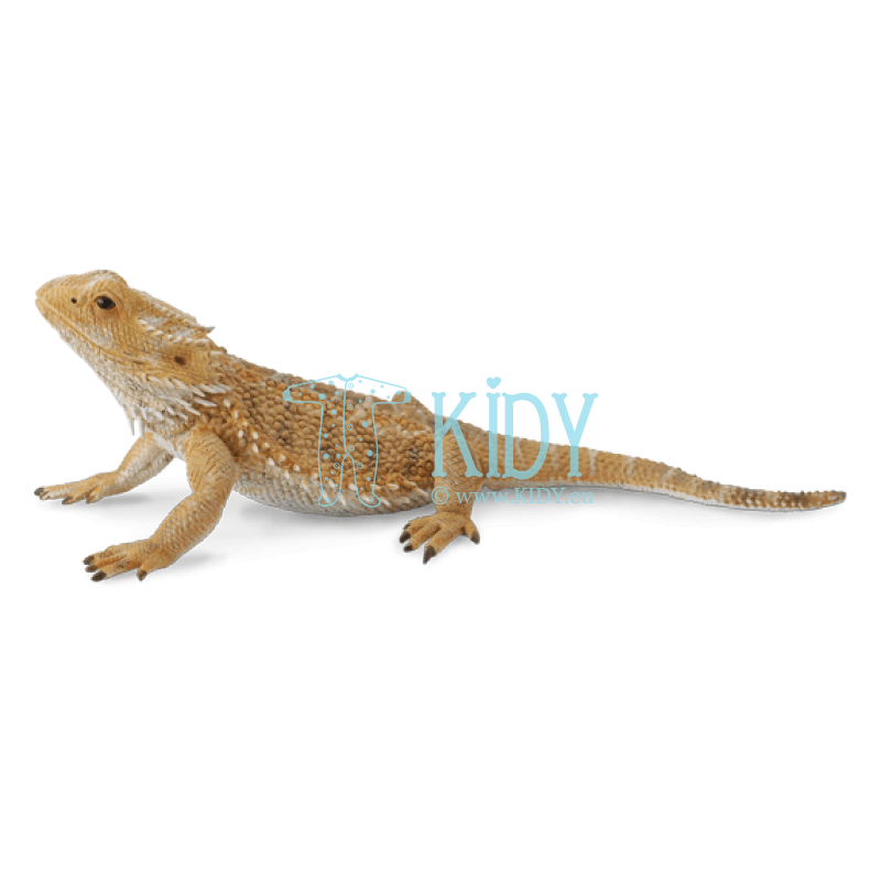 Bearded dragon lizard (Collecta)