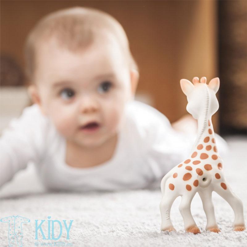 Žirafa SOPHIE dovanų pakuotėje (Vulli) 4