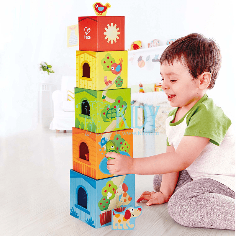Конструктор FRIENDSHIP TOWER (Hape) 4