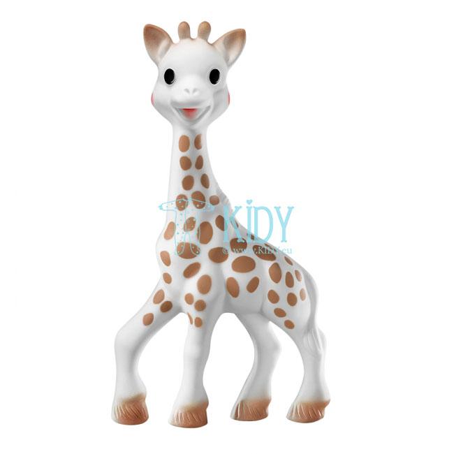 Sophie la girafe kramtukas + migdukas su laikikliu čiulptukui (Vulli) 5