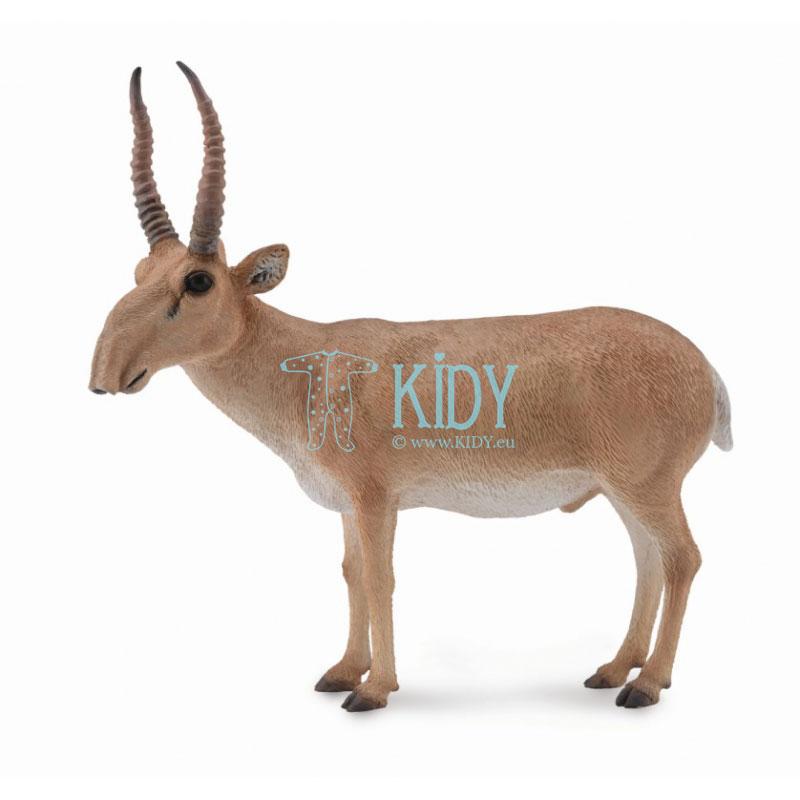 Antilopė Saiga (L)