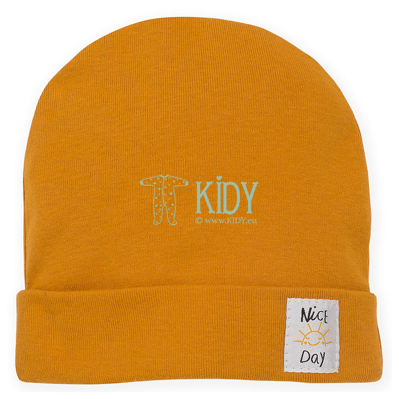 Curry NICE DAY hat